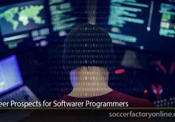 Career Prospects for Softwarer Programmers